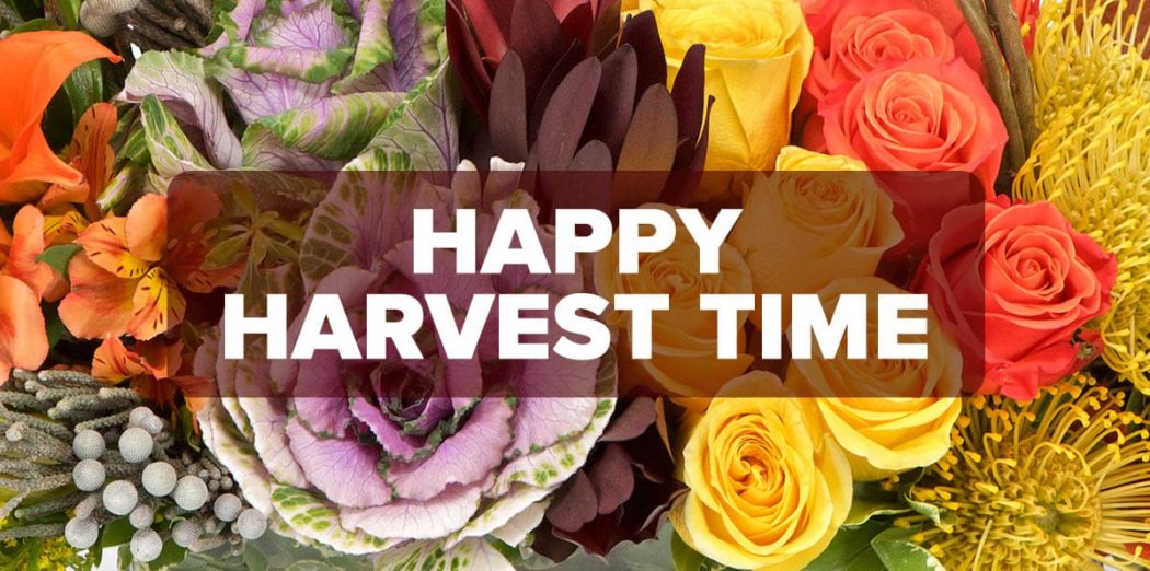 FM4-Bold—Happy-Harvest-Time—Blog